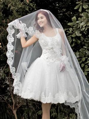 Gorgeous Tyll With Spetsar Wedding Slöjor